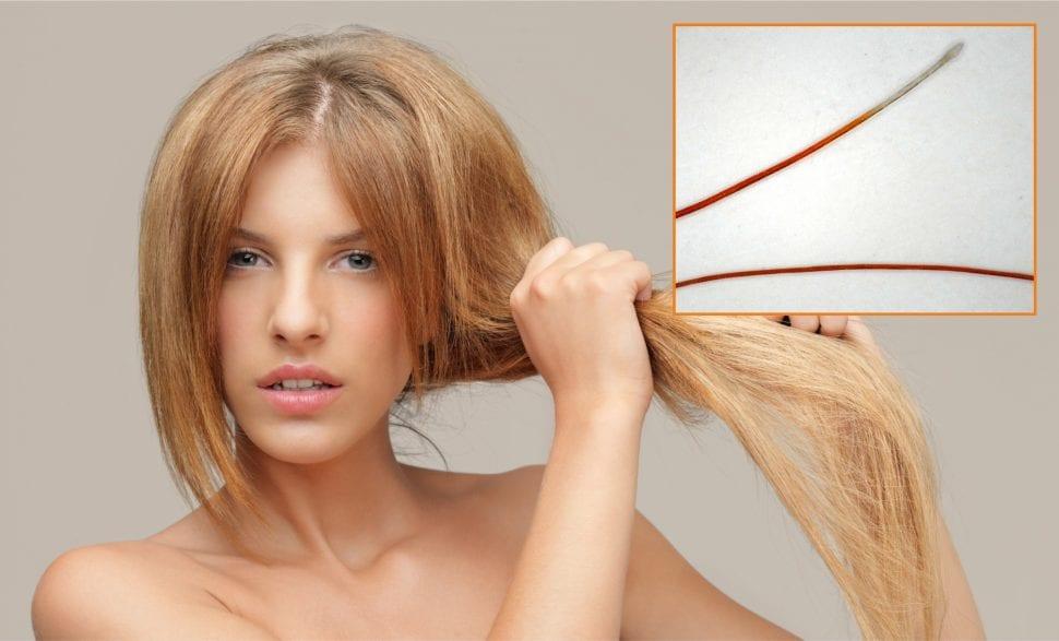 cistenie vlasovych korienkov